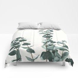 Eucalyptus Leaves Comforters