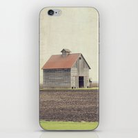 american beauty iPhone & iPod Skins featuring American Beauty Vol 14 by Farmhouse Chic
