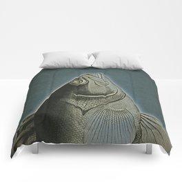 Piscibus 5 Comforters