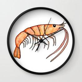 Prawn: Fish of Portugal Wall Clock