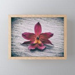 Wilting Orchid Framed Mini Art Print