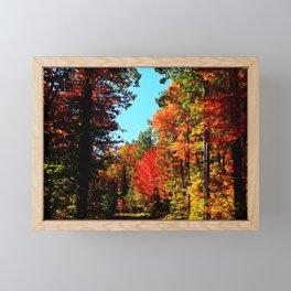Into the Colors Framed Mini Art Print