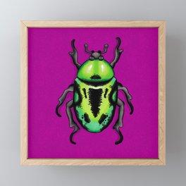 Green Fiddler Beetle Framed Mini Art Print