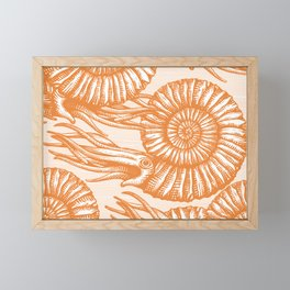 AMMONITE COLLECTION ORANGE Framed Mini Art Print