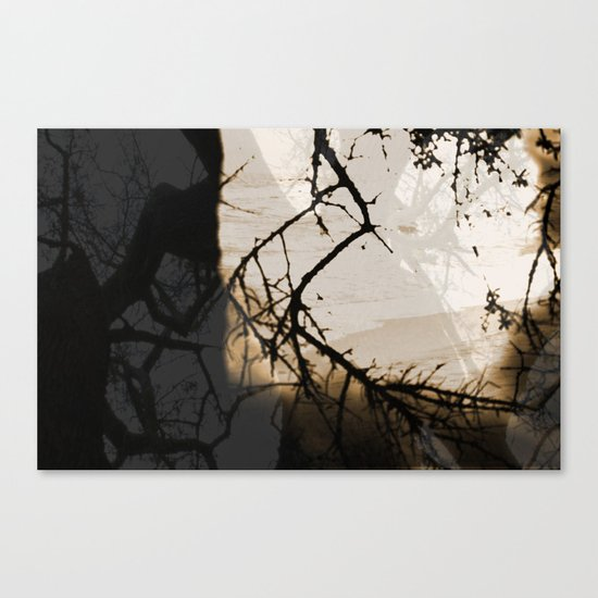 I Dream Of Better Canvas Print