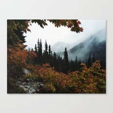 Fall Framed Trail Canvas Print