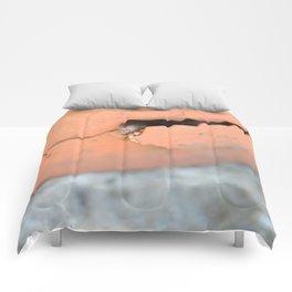 Knock Knock 2 Comforters