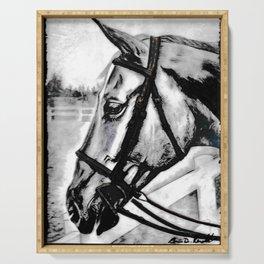 'Content' Original Equine Artwork, Horse Wall Art. EQUESTRIAN Decorating, Original Hand-Drawn Serving Tray