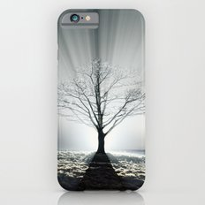 Rays of Fog iPhone 6s Slim Case