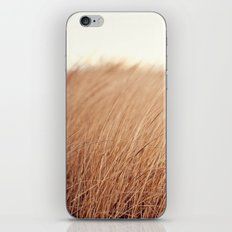Golden Field iPhone & iPod Skin