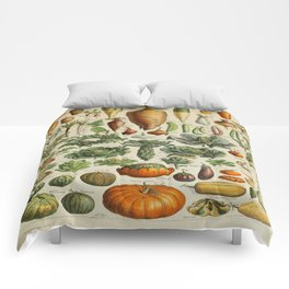 VEGETABLES Legumes Et Plantes Potageres Vintage Scientific Illustration French Language Encyclopedia Comforters