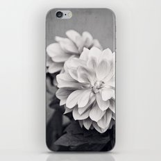 Black and White Dahlia Flower Photography, Grey Floral, Gray Neutral Nature Petals iPhone & iPod Skin