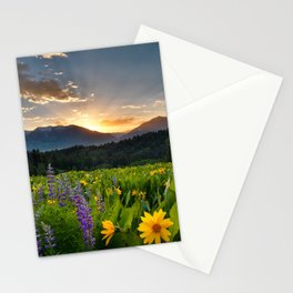 Wildflower Sunrise Stationery Cards