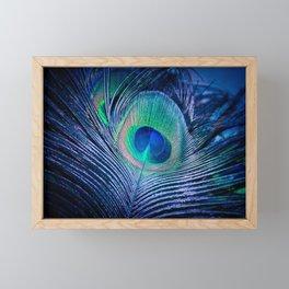 Peacock Feather Blush Framed Mini Art Print