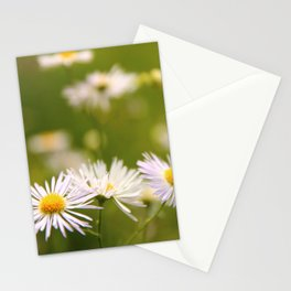 Wild chamomiles flowers Stationery Cards