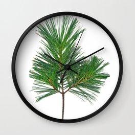 Basic Norway Pine Wall Clock
