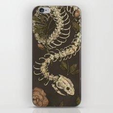 Snake Skeleton iPhone & iPod Skin
