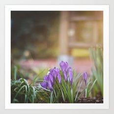 lilac. Art Print