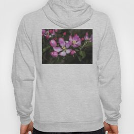 Pink Apple Blossoms Hoody
