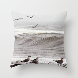 Seagulls and the Surf Throw Pillow