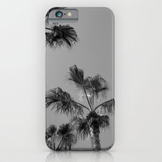 Palm Tress, Fuerteventura. Slim Case iPhone 6s