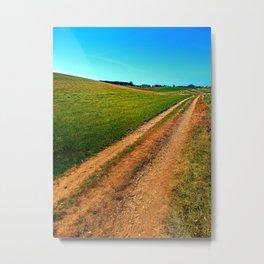 Endless trail near the border Metal Print