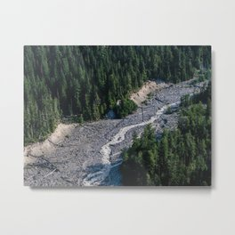 Mount Rainier National Park Metal Print