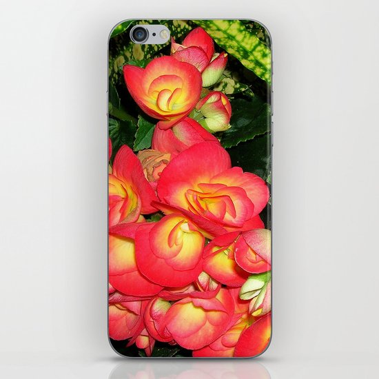 flora VIII iPhone & iPod Skin