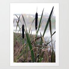 Reeds Seeds Art Print