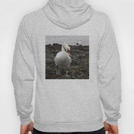 Swans Hoody