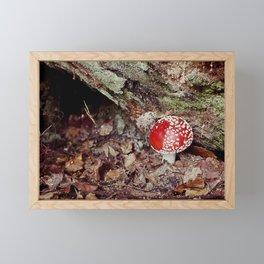 Fungi Forage #1 Framed Mini Art Print