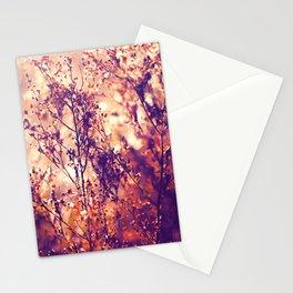Illumination Stationery Cards