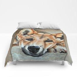 Wangari (Understand me before I'm gone) Comforters