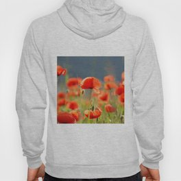 Red Poppies Flowers Hoody