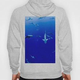 Sharks! Hoody