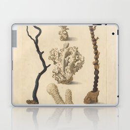 Naturalist Coral Laptop & iPad Skin