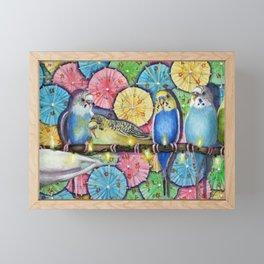 Parakeet Theater Framed Mini Art Print