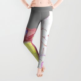 Pandora Cottontail  Leggings