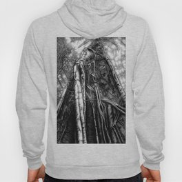 Fig Tree Hoody