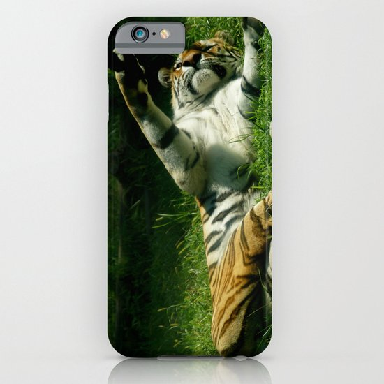Resting Tiger iPhone & iPod Case