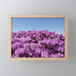 "View of ""Mount Rhodendron"" on a clear day Framed Mini Art Print"