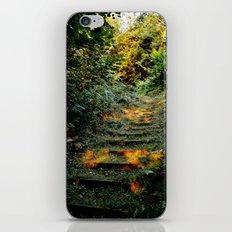 Enchanted Stairway iPhone & iPod Skin