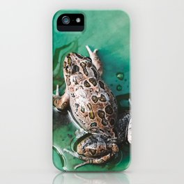 In the Pond iPhone Case