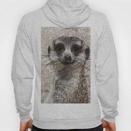 Abstract Animal - Meerkat Hoody