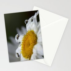 Daisy reflections Stationery Cards