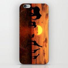 Savanne 2 iPhone & iPod Skin