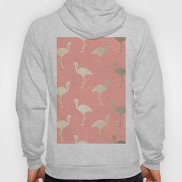 Gold Flamingo Pattern Coral Pink Hoody