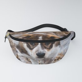 Brian Fanny Pack