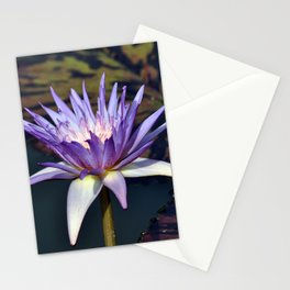 Purple Water Lily Stationery Cards
