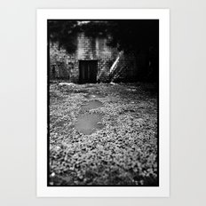 Over the Hill and through the Swamp Art Print